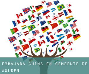 Embajada China en Gemeente De Wolden